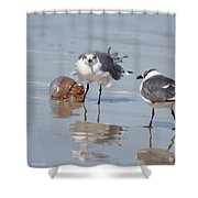 Jellyfish And Friends Shower Curtain
