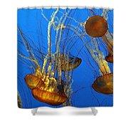 Jellyfish Family Shower Curtain