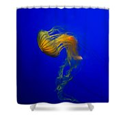 Jellyfish From The Deep Blue Shower Curtain by Nila Newsom