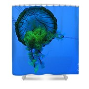 Jellyfish In Green Shower Curtain