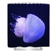 Jellyfish In Motion Shower Curtain