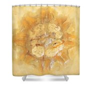 Jellyfish In The Sand Shower Curtain