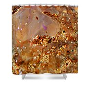 Jellyfish On The Sand. Shower Curtain