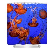Jellyfish Party Shower Curtain