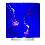 Jellyfish Wall Art 2 Shower Curtain