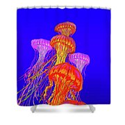 Jellys2 Shower Curtain
