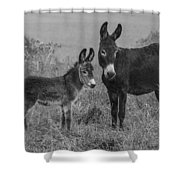 Jenny And Little Jack Shower Curtain