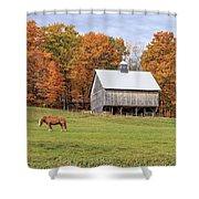 Jericho Hill Vermont Horse Barn Fall Foliage Shower Curtain