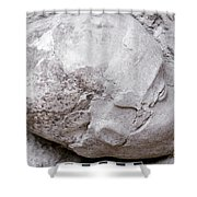 Jericho: Human Skull Shower Curtain