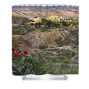 Jerome's Douglas Mansion Shower Curtain