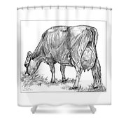 Jersey Milking Cow Shower Curtain