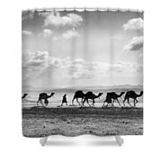 Jerusalem: Caravan, C1918 Shower Curtain