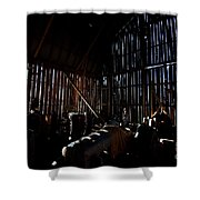 Jesse's In The Barn Shower Curtain