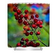 Jessies Berries Shower Curtain