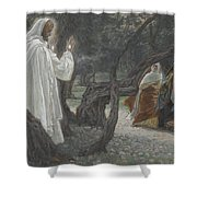 Jesus Appears To The Holy Women Shower Curtain