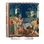 Jesus Entering Jerusalem Shower Curtain