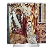Jesus & Moneychanger Shower Curtain