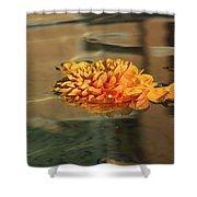 Jewel Drops - Orange Chrysanthemum Bloom Floating In A Fountain Shower Curtain