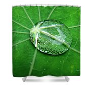 Jewel Of The Nile Shower Curtain