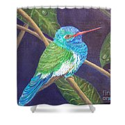 Jewel Of The Skies Shower Curtain