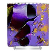 Jeweled Amethyst Shower Curtain
