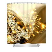 Jewels And Satin Shower Curtain