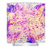 Jewels In The Sky Shower Curtain