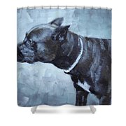 Jiaculy Shower Curtain