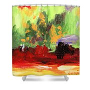 Jill's Abstract Shower Curtain