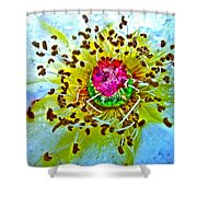 Jive Shower Curtain
