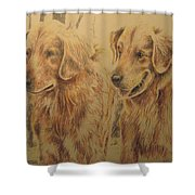 Joe's Dogs Shower Curtain