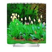 Joe's Tulips Shower Curtain