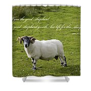 John 10v11 Shower Curtain