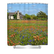 John P Cole's Cabin In Old Baylor Park Shower Curtain