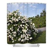 John Wingate Weeks Estate - Lancaster New Hampshire Shower Curtain