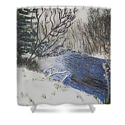 Johnson Vermont In Spring Snow Storm Shower Curtain