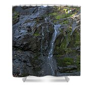 Jones Falls Shower Curtain