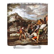 Joseph Sold By His Brothers Shower Curtain