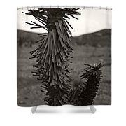 Joshua Top Over Hills Shower Curtain