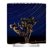 Joshua Tree And Star Trails Shower Curtain