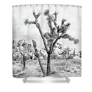 Joshua Tree Branches Shower Curtain