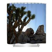 Joshua Tree California Shower Curtain