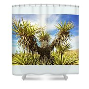 Joshua Tree Claiming To The Heavens Above Shower Curtain