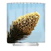 Joshua Tree Cone Shower Curtain