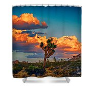 Joshua Tree In All Its Beauty Shower Curtain