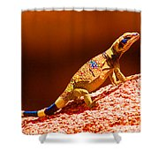 Joshua Tree Lizard Shower Curtain