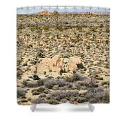 Joshua Tree National Park - Joshua Tree, Ca Shower Curtain