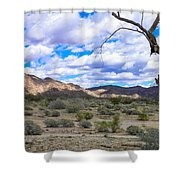Joshua Tree National Park Landscape Shower Curtain