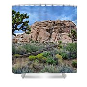 Joshua Tree National Park Summer Evening Shower Curtain