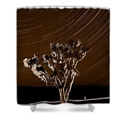 Joshua Tree Night Lights Death Valley Bw Shower Curtain
